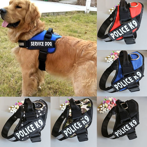 Police K9 Dog Collar with Chest Strap