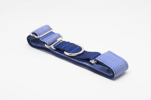 Blue Chevron Martingale