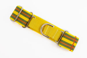 """Citrus"" Lemon Lime and Orange Martingale"