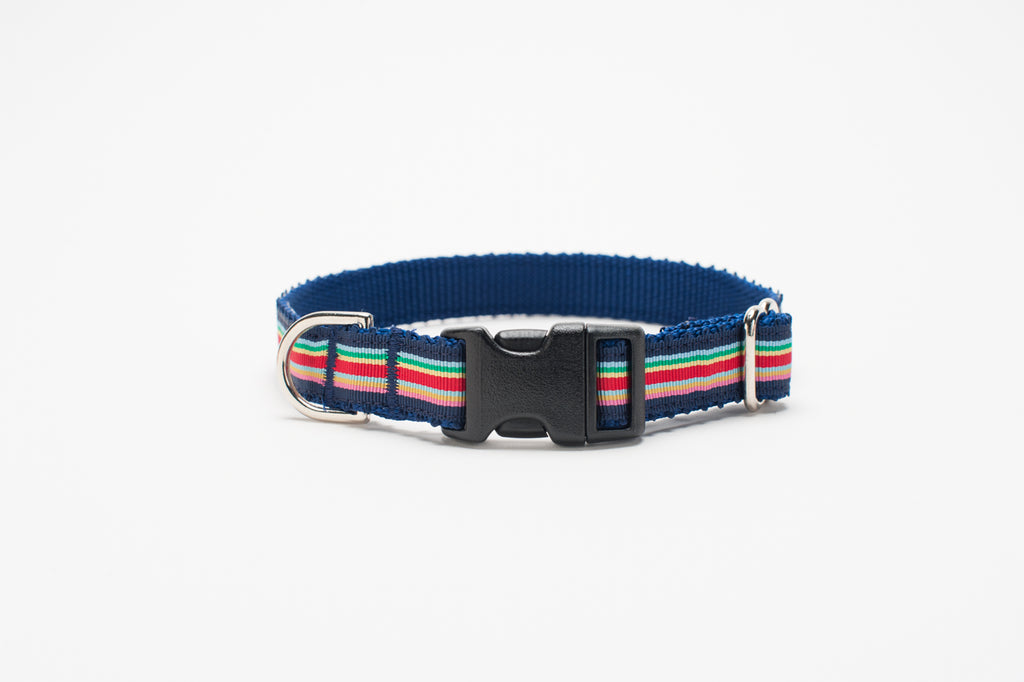 Striped Picot Standard Collar