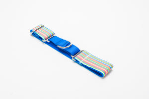 Candy Stripe Martingale
