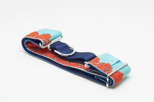 Orange & Aqua Lace Martingale