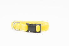 Yellow Velvet Standard Collar