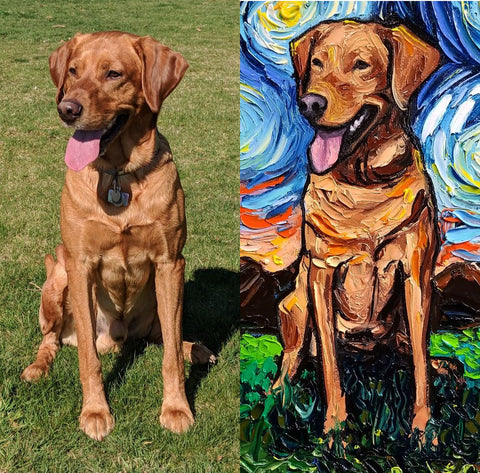 Side by side comparison of fan submitted Red Fox Lab, Bullseye.