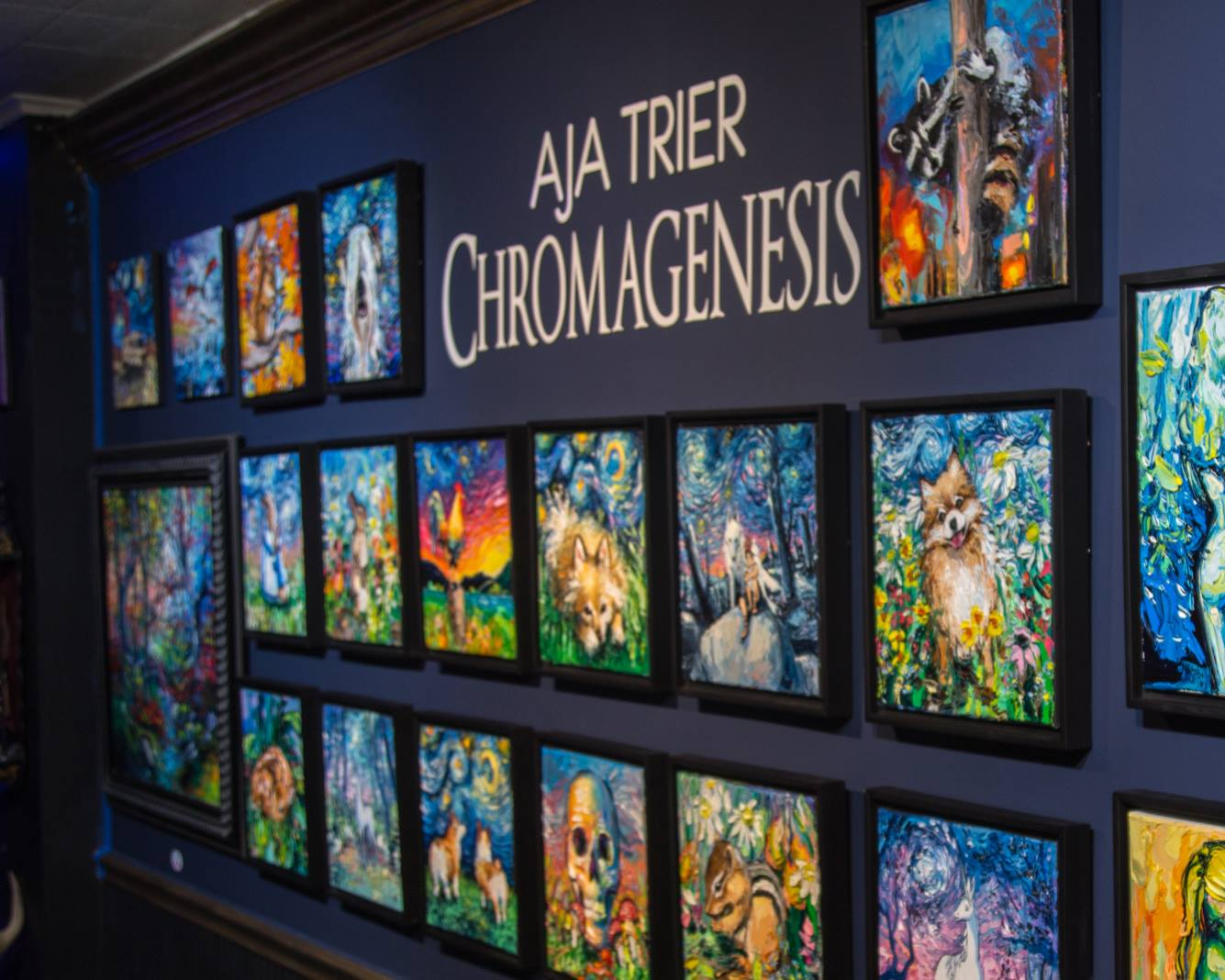 Solo Art Show, Chromagenesis, Future Gallery 2018