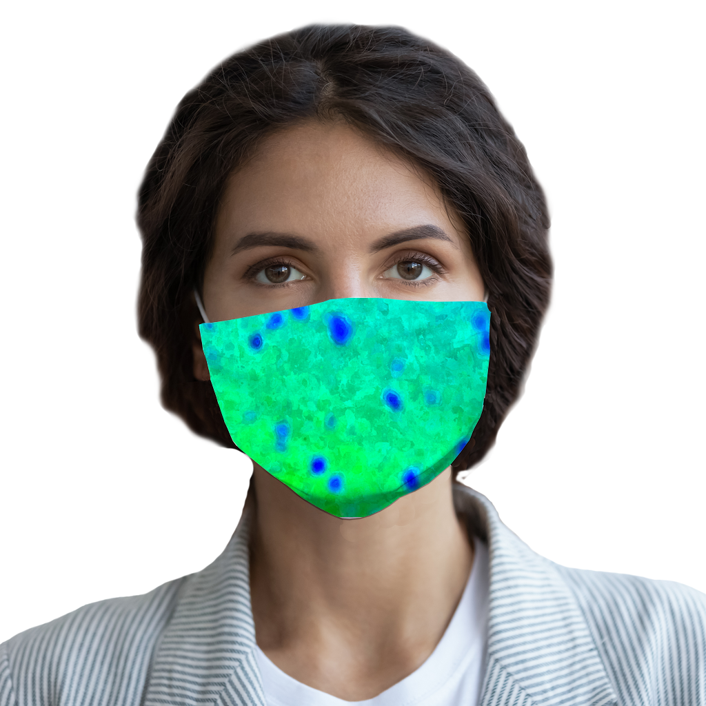 Mahi Print Face Mask with Pocket for Filter