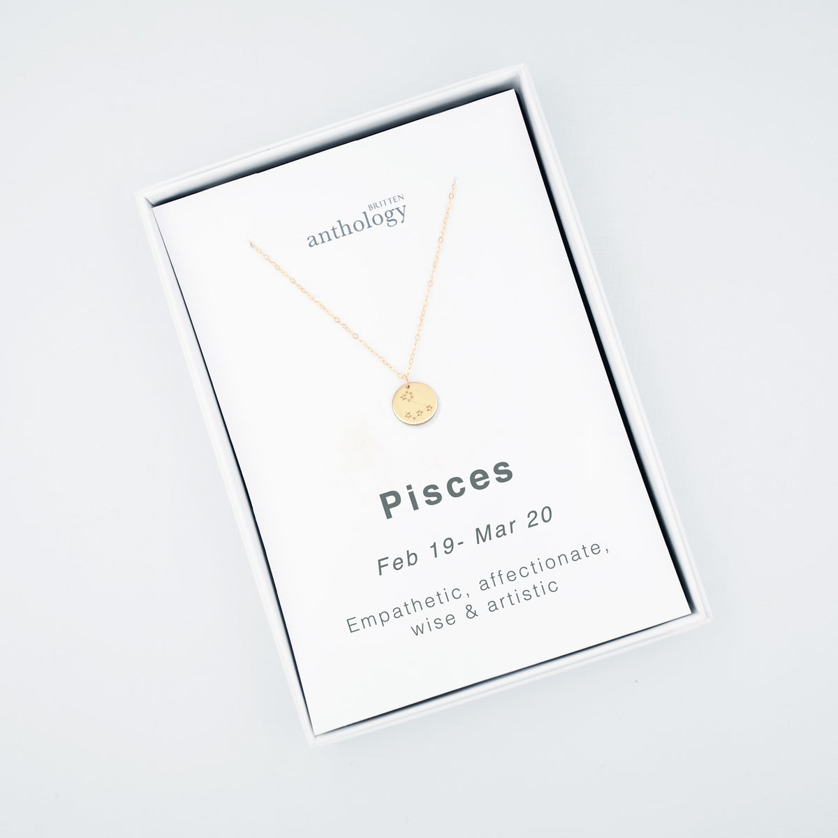 Personalised 'Initial' Zodiac Constellation disc Necklace