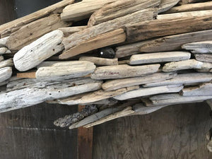 The Driftwood Shark - Paruse
