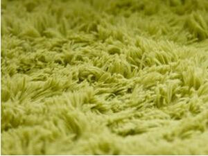 Thick & Shaggy Super Soft Carpet - Paruse