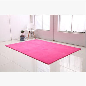 Ultra Soft Thick Memory Foam Absorbent Coral Fleece Fabric Area Rugs - Paruse