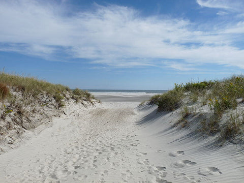 For less crowds and a great surf spot, check out Brigantine Beach.