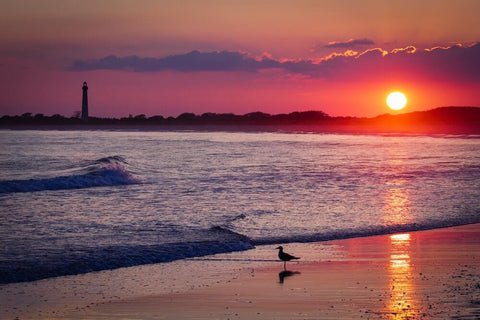 Taking #1 on our list, Cape May is one of the best public beaches in New Jersey.