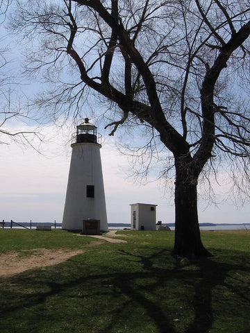Elk Neck State Park offers miles of trails and beaches. (Credit: Ynsalh on Wikipedia)