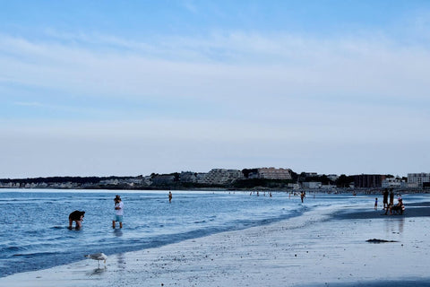 Nantasket Beach is great for fine sand and local attractions.
