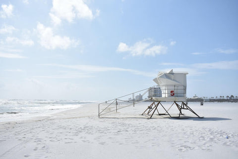 If you're looking to see some dolphins and sea turtles, Pensacola Beach is a great destination.
