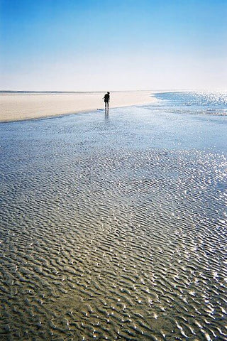 If you're on the lookout for pristine beaches, take a ferry to Sapelo Island. (Credit: Jason Priem on Wikipedia)