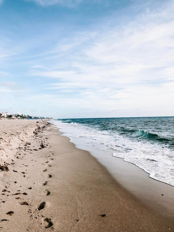 If white sand beaches are your thing, look no further than Venice Beach.