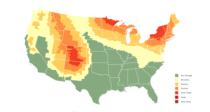 Check out this great fall foliage map, and plan your hikes accordingly