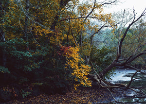 The best autumn hikes near Toronto