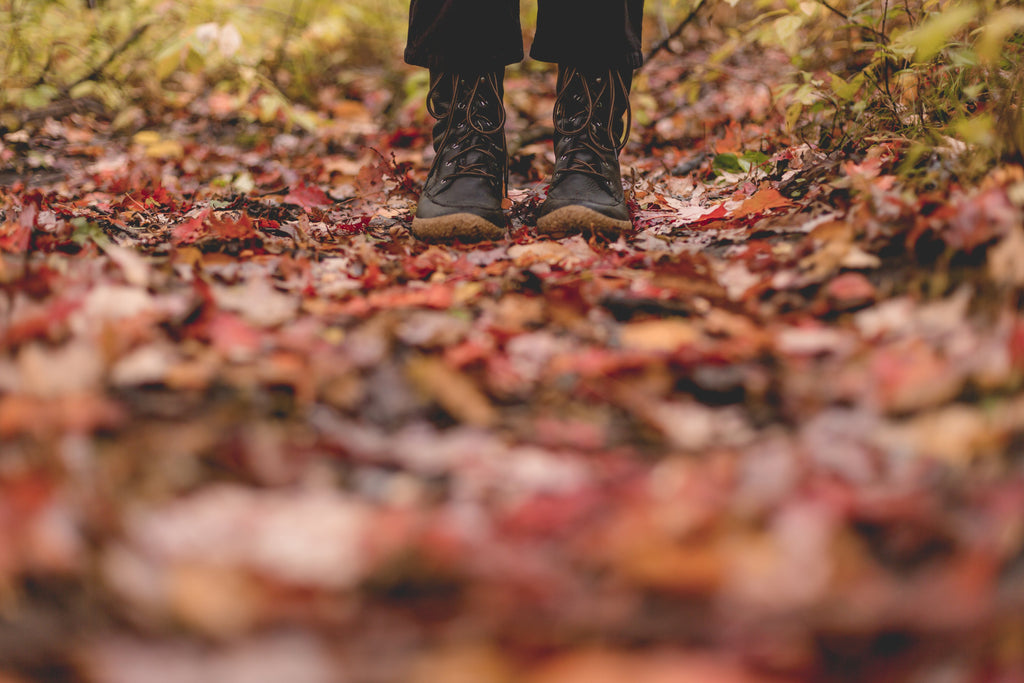 The best autumn hikes in Ohio