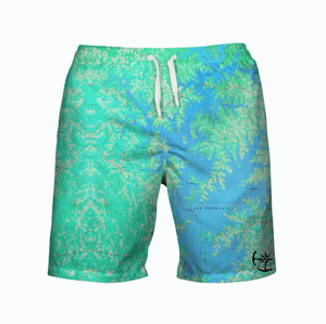 Lake Norman Men's Swimsuit