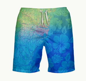 Sydney Coastline Mens Swimsuit