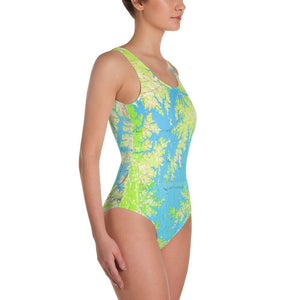 Lake Norman One Piece
