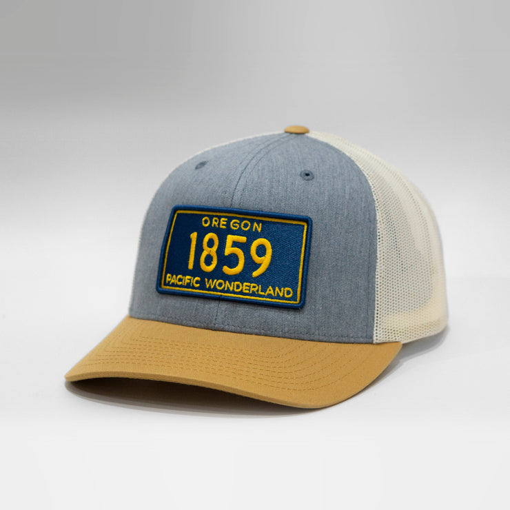 Oregon Vintage License Plate Curved Brim Snapback Cap