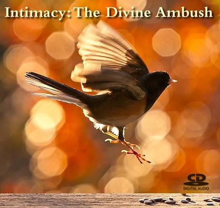 Intimacy: The Divine Ambush ~ CD