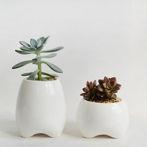 Set of 2 Ceramic Flower Pots