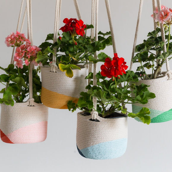 Closed Mondays | Hanging Rope Planter