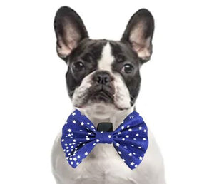 Bow Tie for Dogs: Starry Night Bow