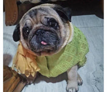 Load image into Gallery viewer, Dog Clothes: Dog Sherwani Wedding Outfit (Green)