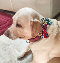 Load image into Gallery viewer, Bow Ties for Dogs: Gujarati Mirror Embroidery Bows