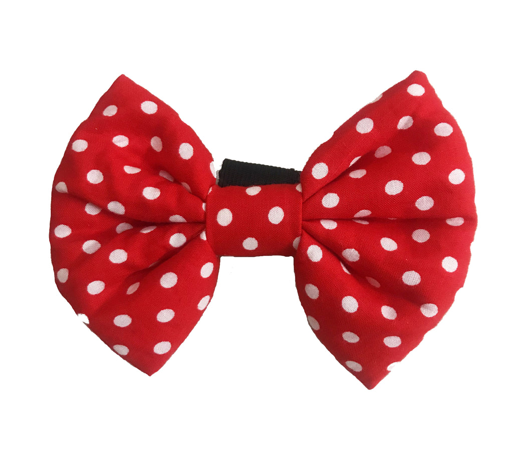 Bow Ties for Dogs: Red Polka Dots