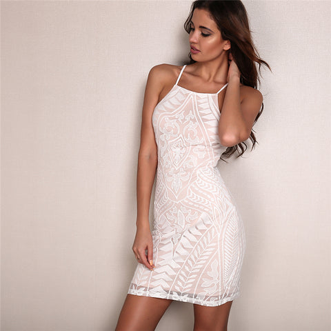 Mesh Backless Halter Hollow Out Dress