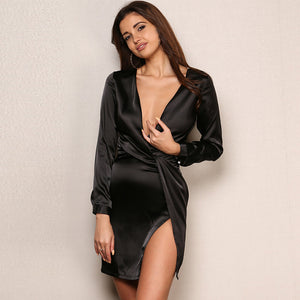 Long Sleeve Deep V Neck Evening Party Dress