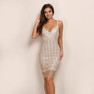 V Neck Sequin Flower Lace Mesh Dress
