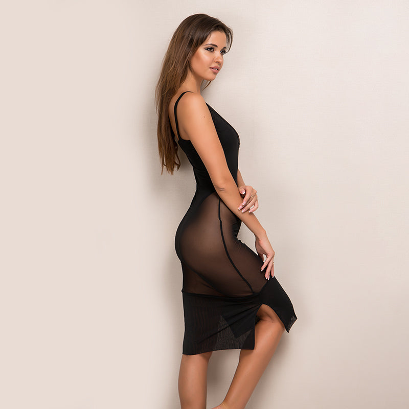 Mesh Vintage Sleeveless Bodycon Party Dress