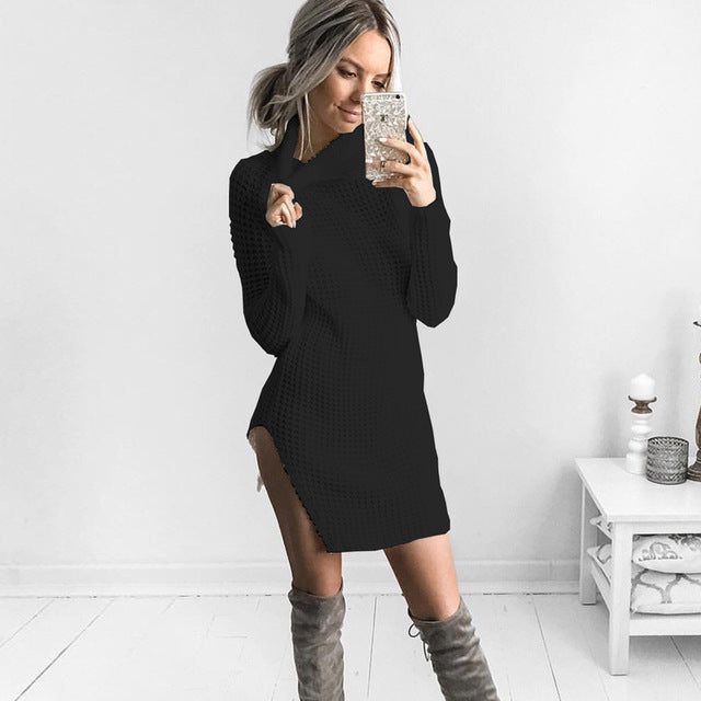 Turtleneck Neck Knit Casual Top