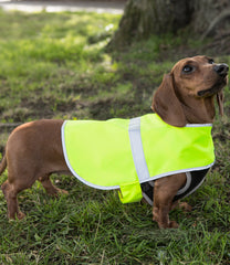 Enhanced Visibility Reflective Dog Vest - T Shirt Printing UK