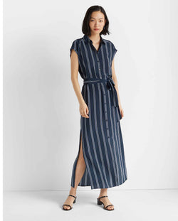 Club Monaco Danielle Silk Dress in Blue Stripe