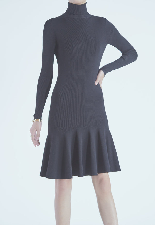 Buy Item : REISS Mimi Turtleneck Sweater Dress