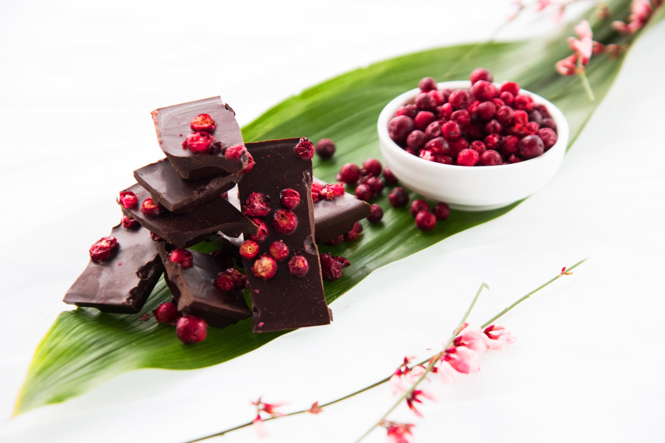A picture of Taiga Chocolate - Lingonberry Dark Chocolate