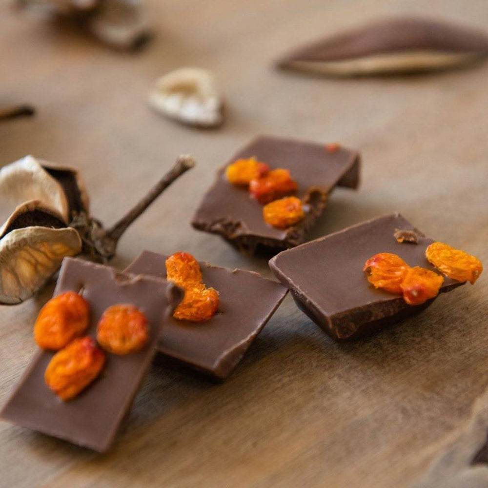 Load image into Gallery viewer, Taiga's Milk Chocolate with Sea Buckthorn Berries 100g Milk Chocolate Taiga chocolate