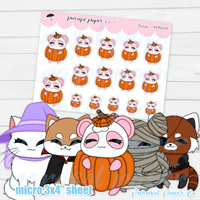 Pandy and Friends - Halloween Costume - PF009