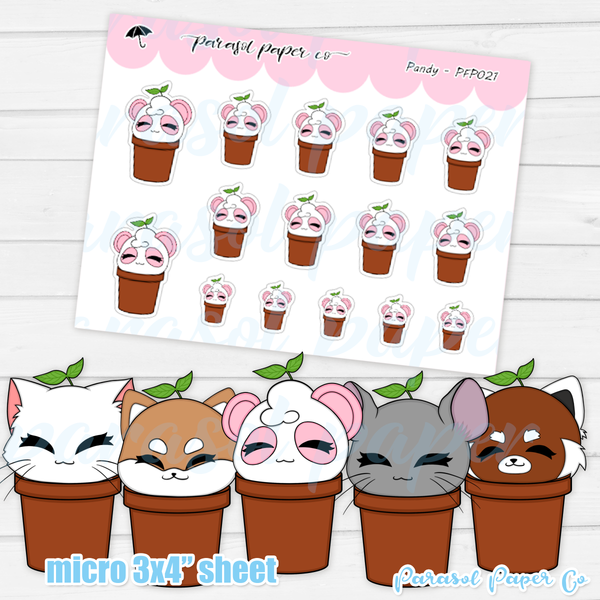 Pandy and Friends - Sprout - PF021