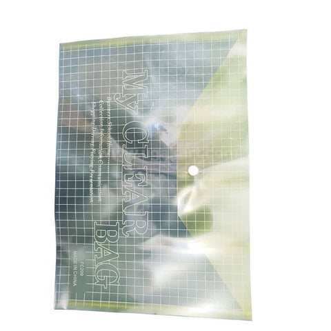 Clear Bag A4 Size File _2PC