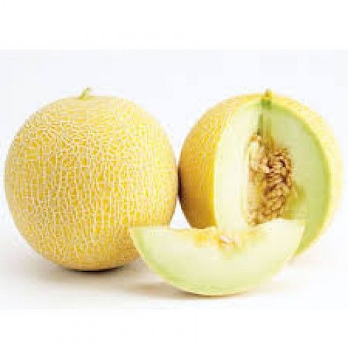 SWEET MELON 1 P.C (MEDIUM)