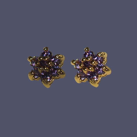 A Pair Of Gold And Purple Stones Ear Pins/Earrings
